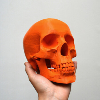 Skullnew